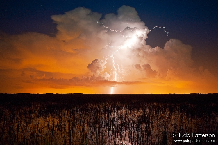 Strike, Everglades National Park, Florida, United States