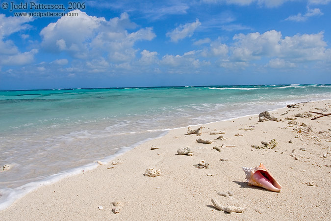 Pristine Beach, Dry Tortugas National Park, Florida, United States