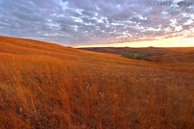Prairie at Dusk, Konza Prairie, Kansas, United States