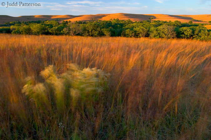 Windy Prairie, Konza Prairie, Kansas, United States