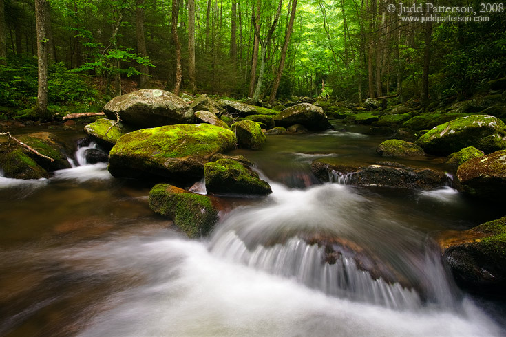 Flow, Great Smoky Mountains National Park, Tennessee, United States