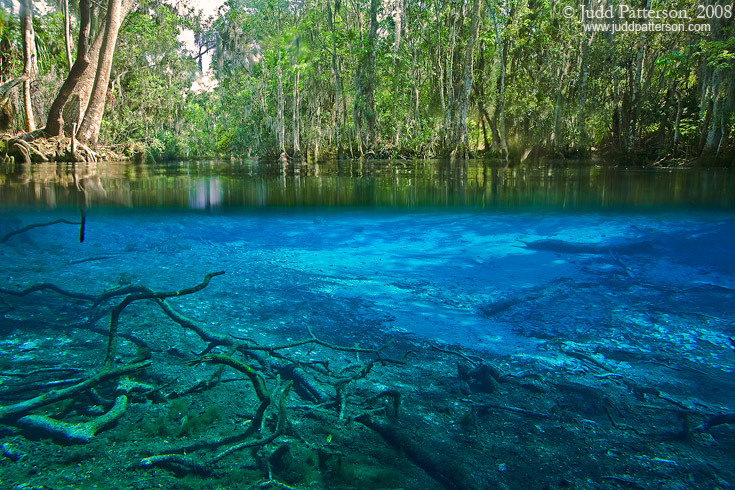 Crystal Clear, Three Sisters Spring, Crystal River, Florida, United States